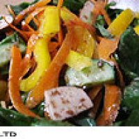 seasoned dry tofu salad